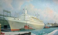 The MS rotterdam VI