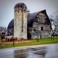 Buffalo, Minnesota