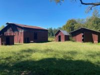 Barn & Buildings Circa 1900 & 1950