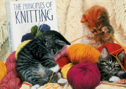 We Already Know the Principles of Knitting!