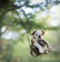 relaxed swinging :)