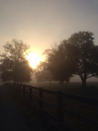 October morning pasture