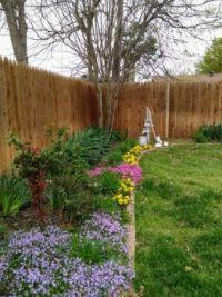 Oklahoma springtime backyard