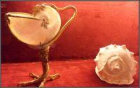 Lastury...  Shells ...
