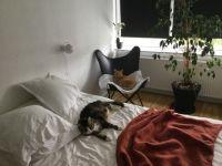 Go away - we are sleeping