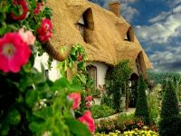 Thatched roof  Cottage Garden