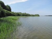 Along the shore of the Vlhlavský fishpond