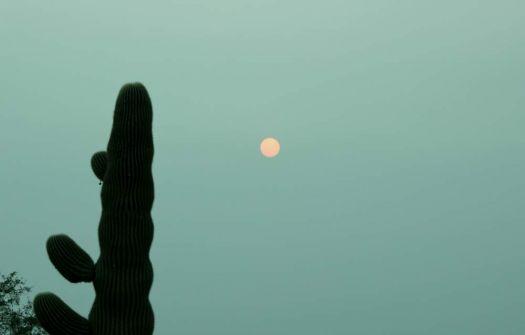 Smoke Haze in the Desert