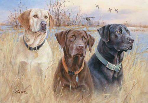 Great Hunting Dogs