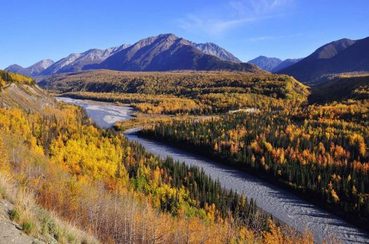 Fall on the Matanuska River, Glenn Hwy, Alaska