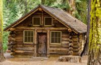 Cabin In The Pines......