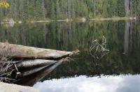 Česká republika - Šumava - Prášilské jezero