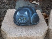 Painted Kitty on rock
