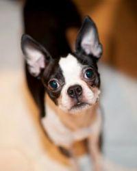 My Chloe (1)