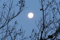 Almost full moon at about 6AM this morning.