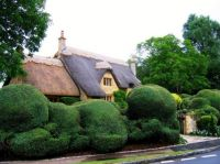 Newly Rethatched Cottage in Chipping Campden Cotswolds