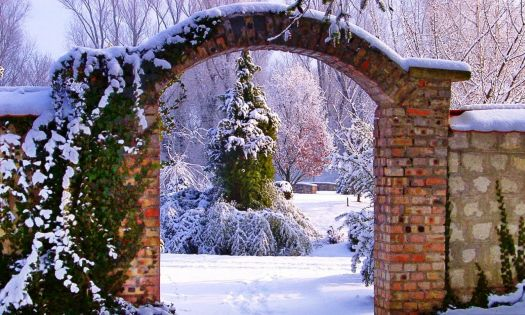 Winter Arch