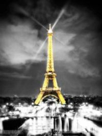 Paris at Night (1)
