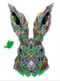 Farm & Forrest Animals Coloring Rabbit