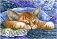 Ginger Cat Print In Blue Fabric