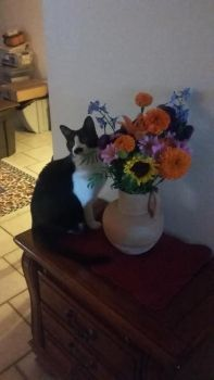 Stasha with Birthday flowers