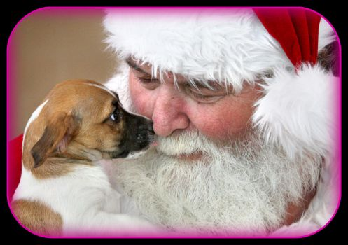 Santa Claus, portrayed by Steve Stickley of Stephens City, Virginia, Esther L. Boyd Animal Shelter in Winchester, Virginia