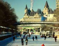 Winter scene - Château Laurier & Rideau Canal skateway for vfdl47