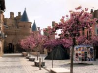 Castillo de Erriberri (Euskal Herria)