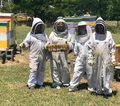 My niece  Nancy  in a  bee suit holding the honeycomb