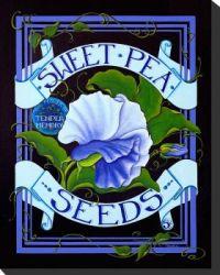 sweet-pea-seed-pack