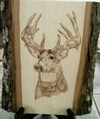 Woodburned mule deer