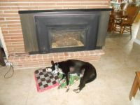 Howie Snoozin by the Fireplace