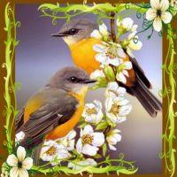 Birds with Magnolias