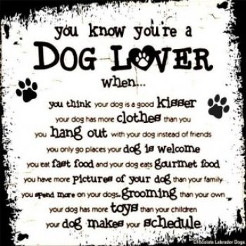 Small You A Dog Lover Dogs Quotes Dogs Stuff Dog Lovers Puppys Dogs