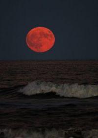 Susan Ogden Crowe's Hunters Moon OC NJ