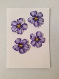 Flowers for a future card
