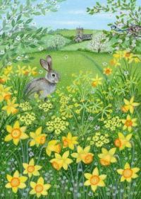 Narcissi and Bunnie