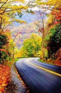 Autumn in the Blue Ridge Mountains, North Carolina USA