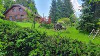 Sloni na Šumavě