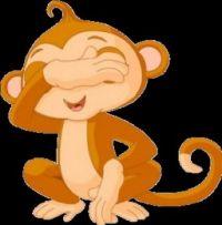 Mokey see Monkey do