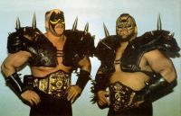 The Road Warriors (Hawk & Animal)