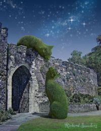 Topiary Cat Artwork