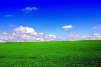 Green-field-blue-sky