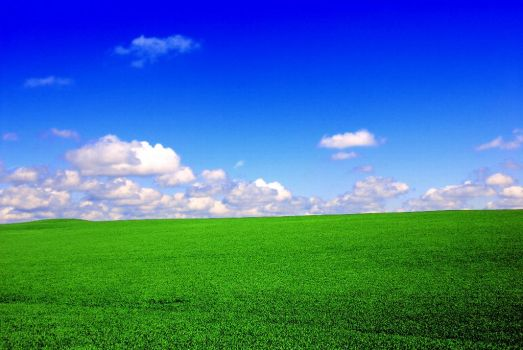 Green-field-blue-sky