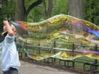 A Bubble in Central Park, New York