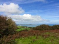 On St Boniface Down, IoW