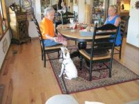 Memories:  Dusty Visiting me with his Mom and Aunt