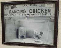 Dancing Chicken