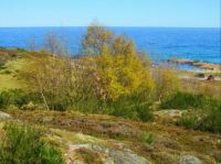 Summer on Bornholm  2