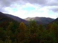 Fall 2012 NC